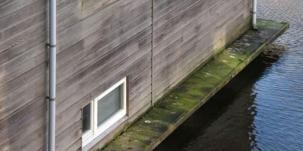 vervuild betonnen rand met groene alg